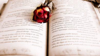 تصویر از خرید رمان انگلیسی اورجینال
