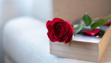 تصویر از کتاب عاشقانه
